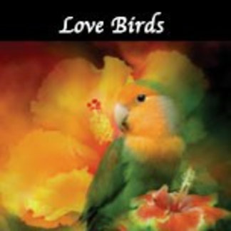 Love Birds Collection