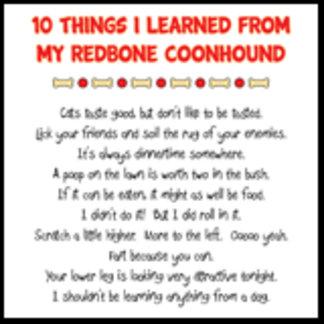 10 Things I Learned From My Redbone Coonhound Joke