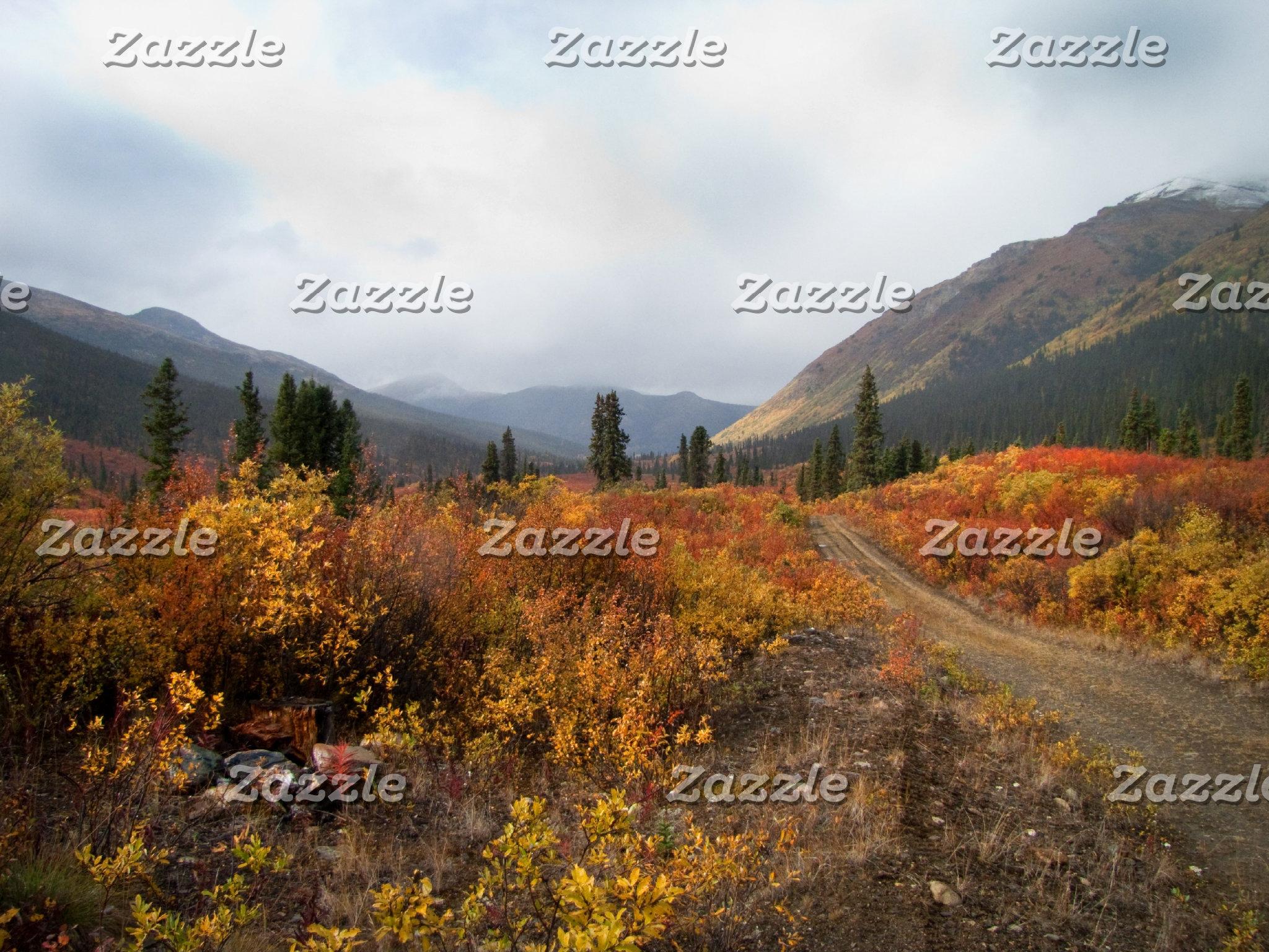 Landscapes and Scenic Vistas