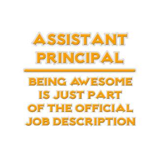 Assistant Principal .. Official Job Description