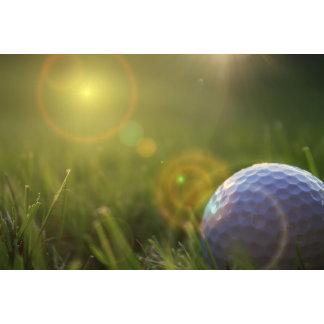 Golf on a Sunny Day