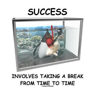 Success Involves Taking A Break Duke Snorkeling