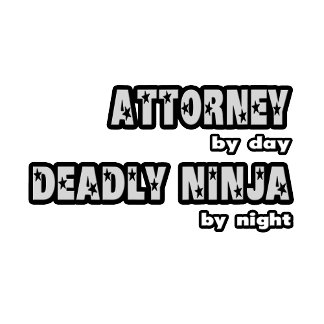 Attorney By Day...Deadly Ninja By Night