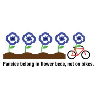 Pansies Belong in Flower Beds