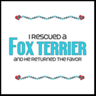 I Rescued a Fox Terrier (Male Dog)