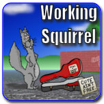 Working Squirrel