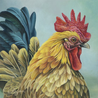 Chickens/Roosters/Hens