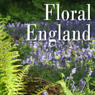 Floral England