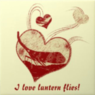 I love Lantern flies