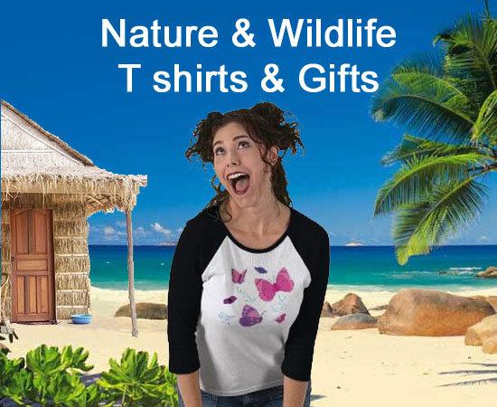 Nature & Wildlife Store