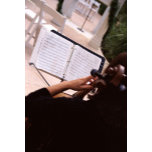 violin player.jpg