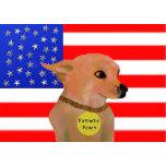 Patriotic Pooch1.jpg