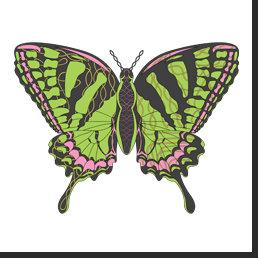 Celtic Swallowtail