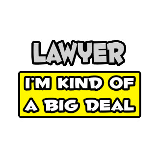 Lawyer .. I'm Kind of a Big Deal