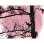 DSCN4047  Bird Silhouette in Pink    Painted Versi