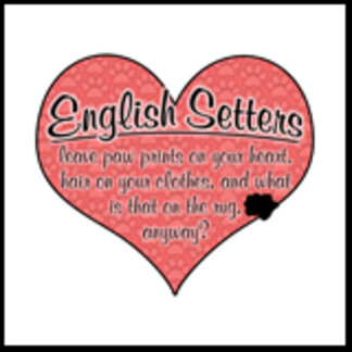 English Setter Paw Prints on Your Heart Humor