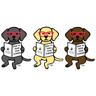 Labrador Hipster Puppies