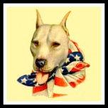 Hero Dog.jpg