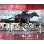 Barbaro 2.jpg