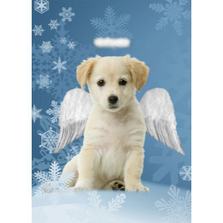 Angel Puppy Christmas Cards and Gifts