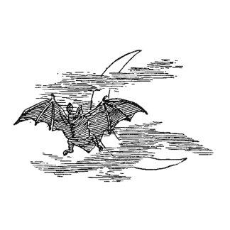 Flying Bat and Crescent Moon