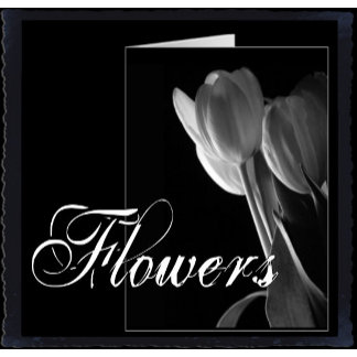 Flowers : Floral Photography & Art