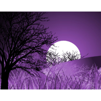 Full Field Moon - Multiple Colours