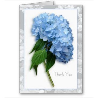 ♥ W Thank You Cards