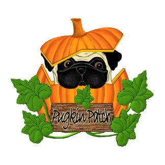 Pug Pumpkin Patch