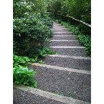Stepping-Into-the-Garden.jpg