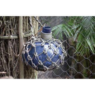 blue glass bottle faded in net against fence