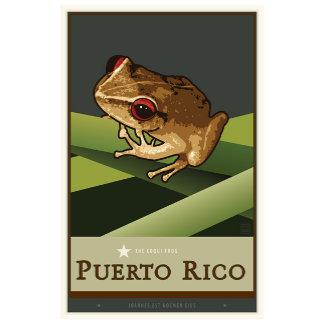 Puerto Rico +