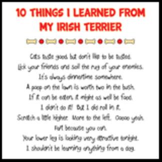 10 Things I Learned From My Irish Terrier Joke