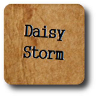 Daisy Storm