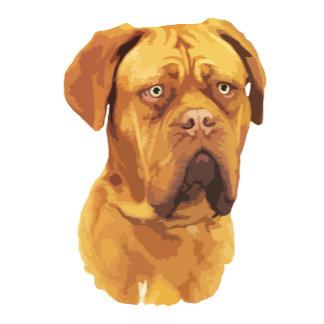Dogue De Bordeaux graphic