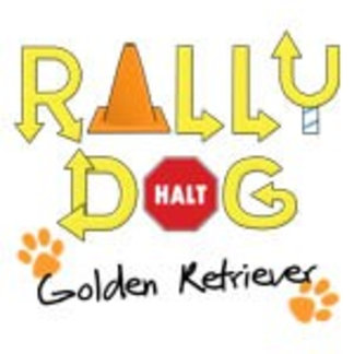Golden Retriever Rally Dog