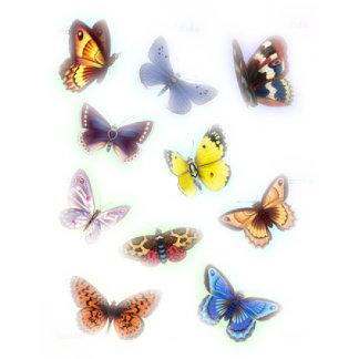 Butterflies multi * 64 items,