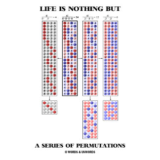 Life Is Nothing But A Series Of Permutations