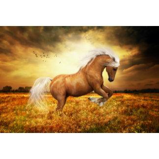 Equine Art - Love of Horses