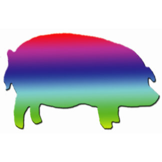 Rainbow Pig