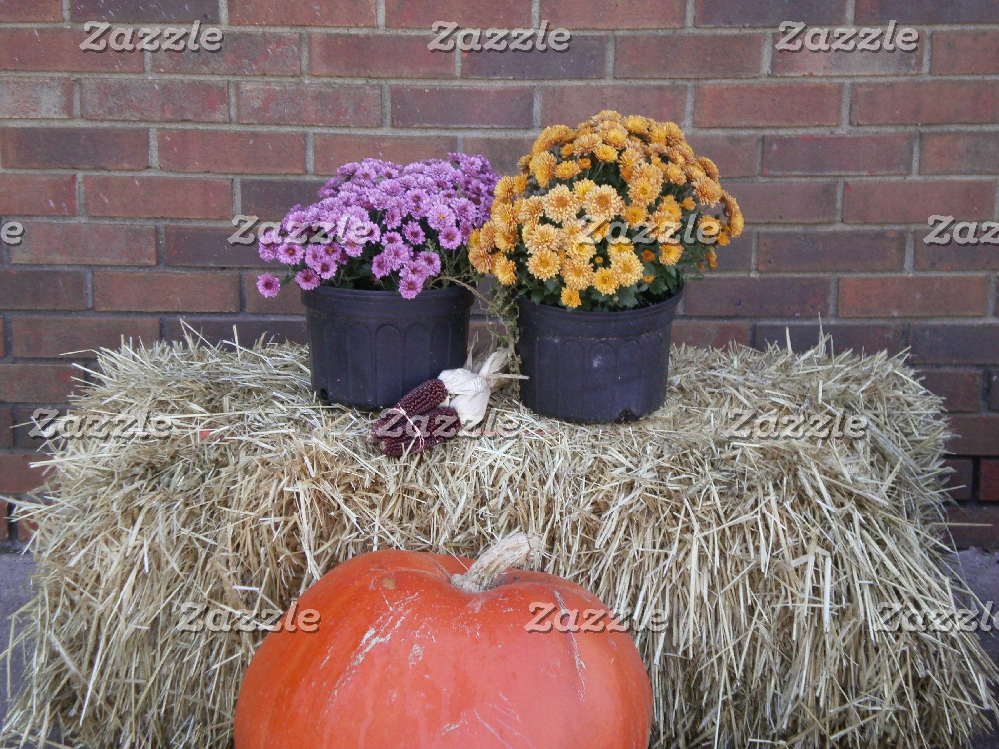 Autumn Thanksgiving Harvest Scene