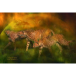 CheetahWorldPstrH.jpg
