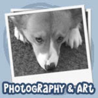 Corgi Photography and Art