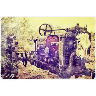 GREETING CARDS  by CowGirlZen Photography