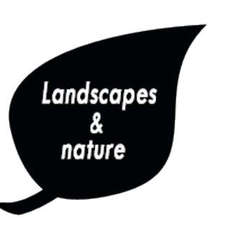 Landscapes n Nature
