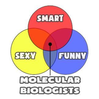 Venn Diagram .. Molecular Biologists