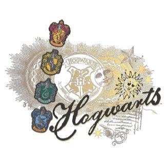 Hogwarts Logo and Professors 2