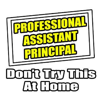 Professional Assistant Principal .. Joke