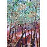 SunlitTrees.jpg.JPG