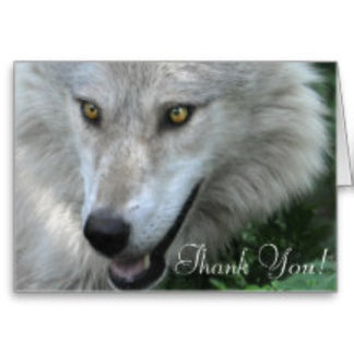 WOLF Cards and Business-Cards